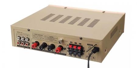 Аудио Bluetooth усилитель Sunbuck AV-580 золотой